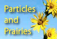 Particles and Prairies